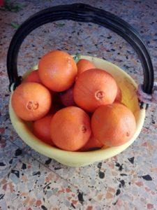 Naveline, arance Biologiche